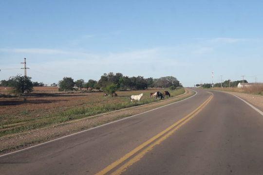 Ruta 34: Descontrol y peligro