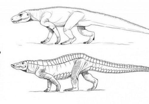 Científicos argentinos descubren en Bolivia huellas de un animal que precedió a los dinosaurios