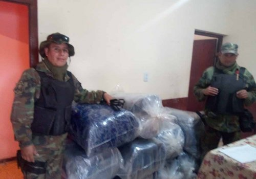 La Policía incautó 240 kilos de hoja de coca en Oran