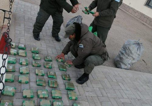 Más de 440 kilos de hojas de coca en dos procedimientos en Salta